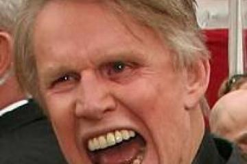 the gallery for gt young gary busey