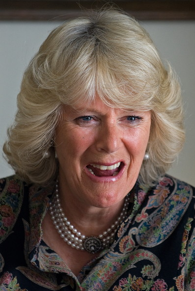3 Camilla Duchess Of Cornwall Jokes By Professional Comedians